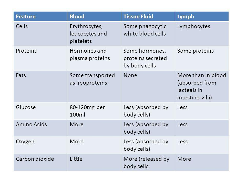 Feature Blood. Tissue Fluid. Lymph. Cells. Erythrocytes, leucocytes and platelets. Some phagocytic white blood cells.