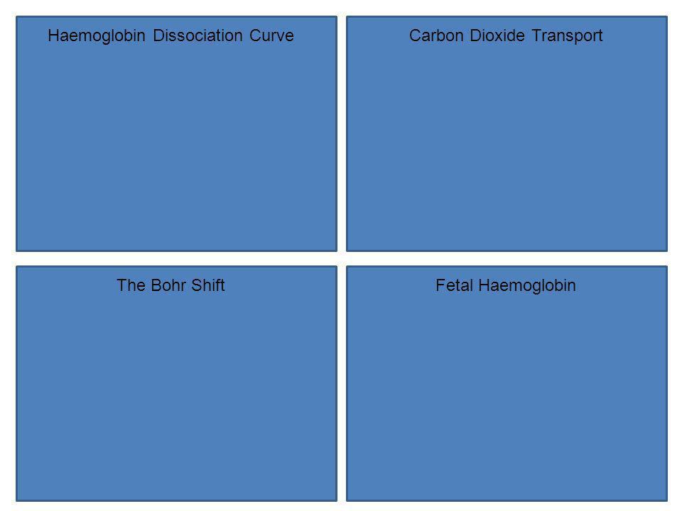Haemoglobin Dissociation Curve Carbon Dioxide Transport