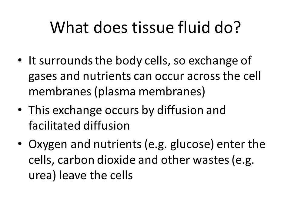 What does tissue fluid do