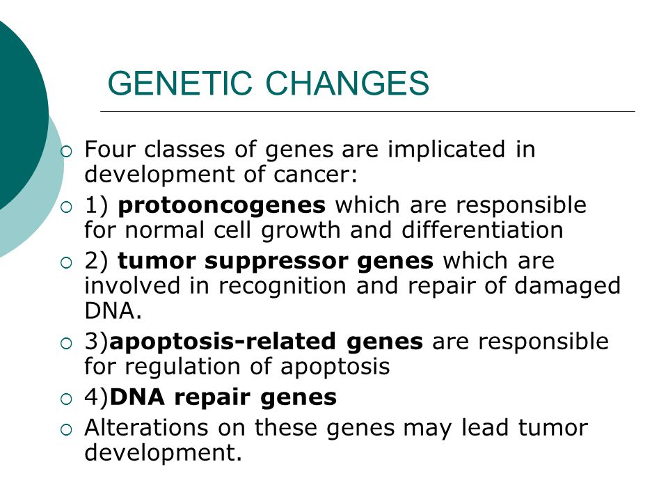 GENETIC CHANGES Four classes of genes are implicated in development of cancer: