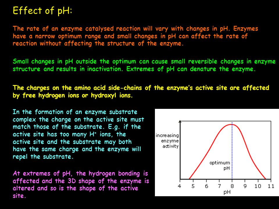 Effect of pH: