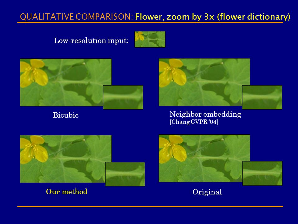 QUALITATIVE COMPARISON: Flower, zoom by 3x (flower dictionary)