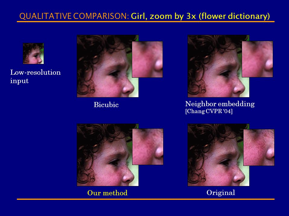 QUALITATIVE COMPARISON: Girl, zoom by 3x (flower dictionary)