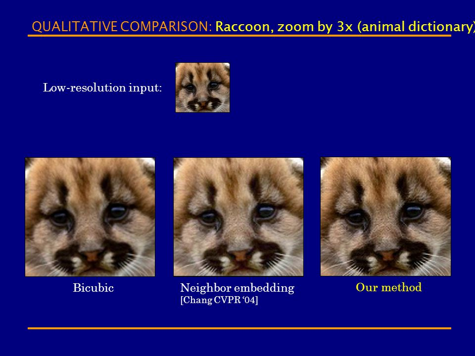 QUALITATIVE COMPARISON: Raccoon, zoom by 3x (animal dictionary)