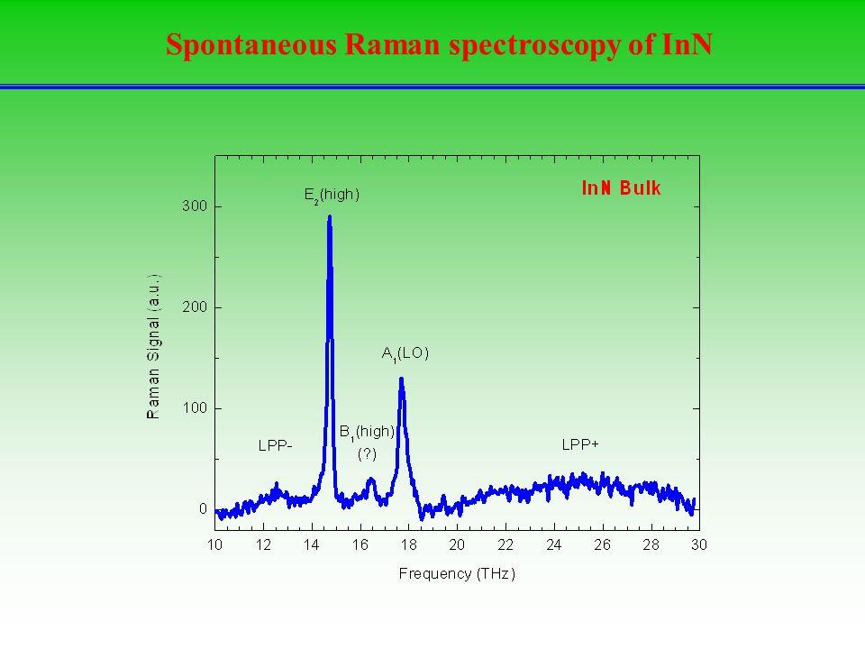 Spontaneous Raman spectroscopy of InN