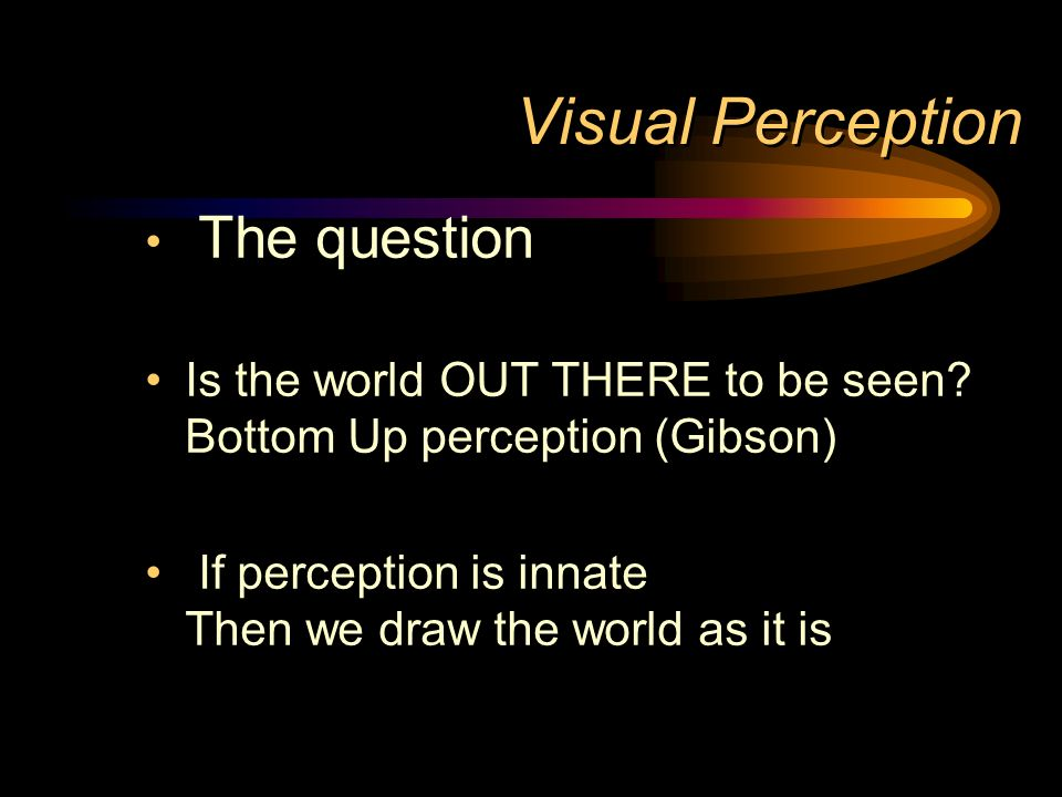 Visual Perception The question
