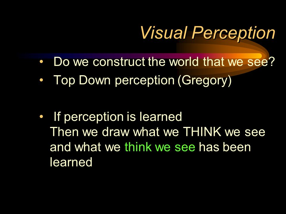 Visual Perception Do we construct the world that we see