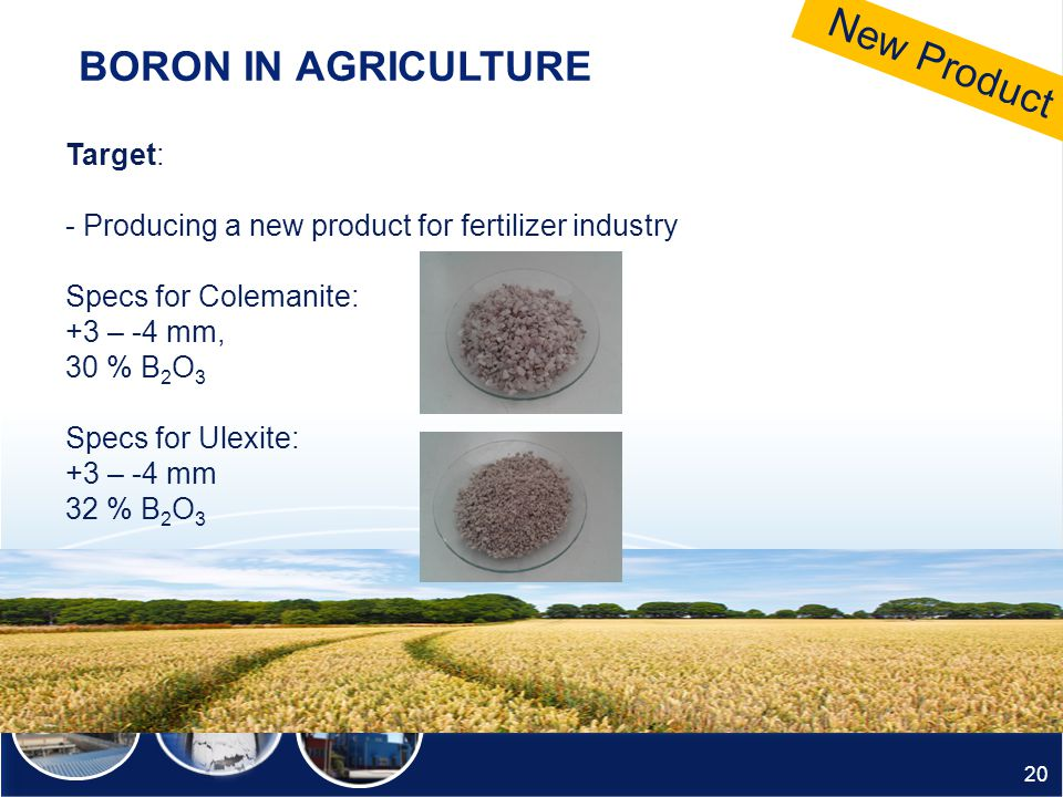 New Product BORON IN AGRICULTURE Target: