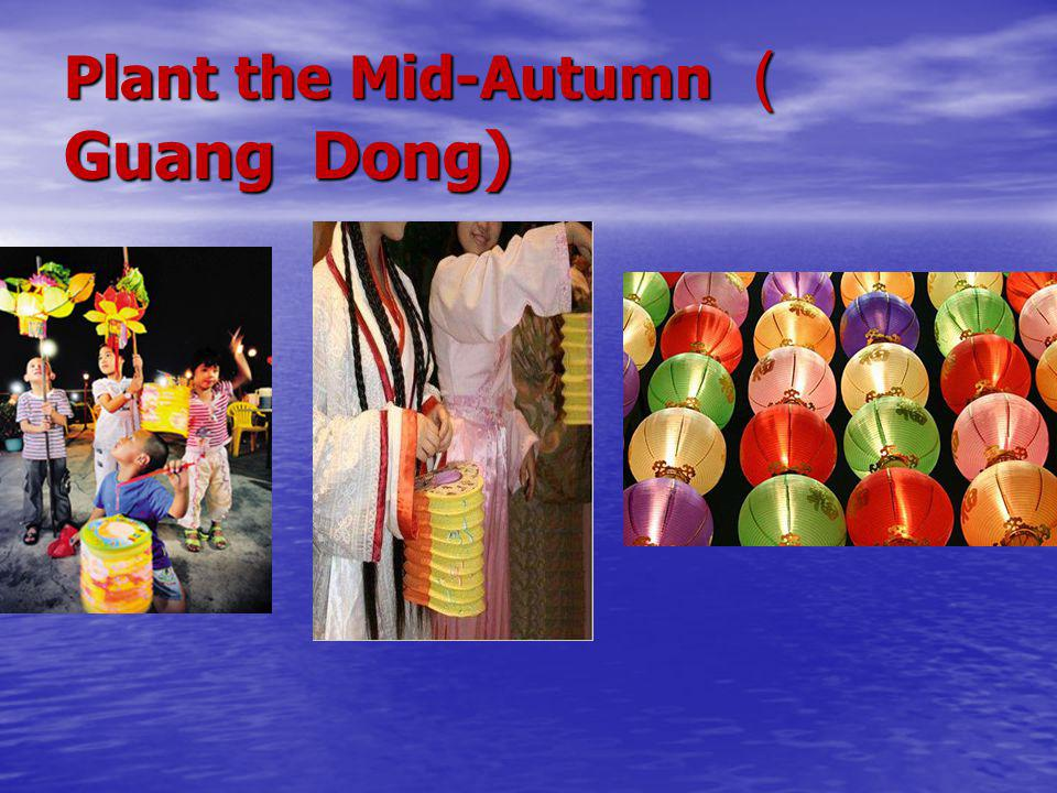 Plant the Mid-Autumn (Guang Dong)