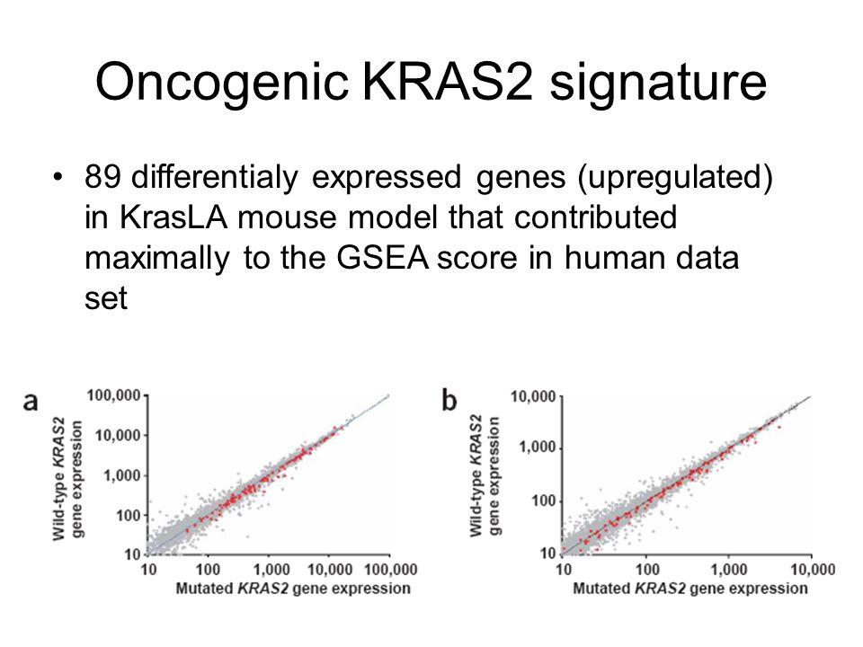 Oncogenic KRAS2 signature
