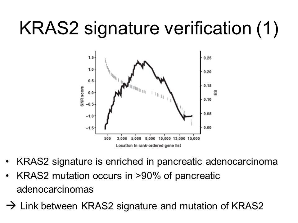 KRAS2 signature verification (1)