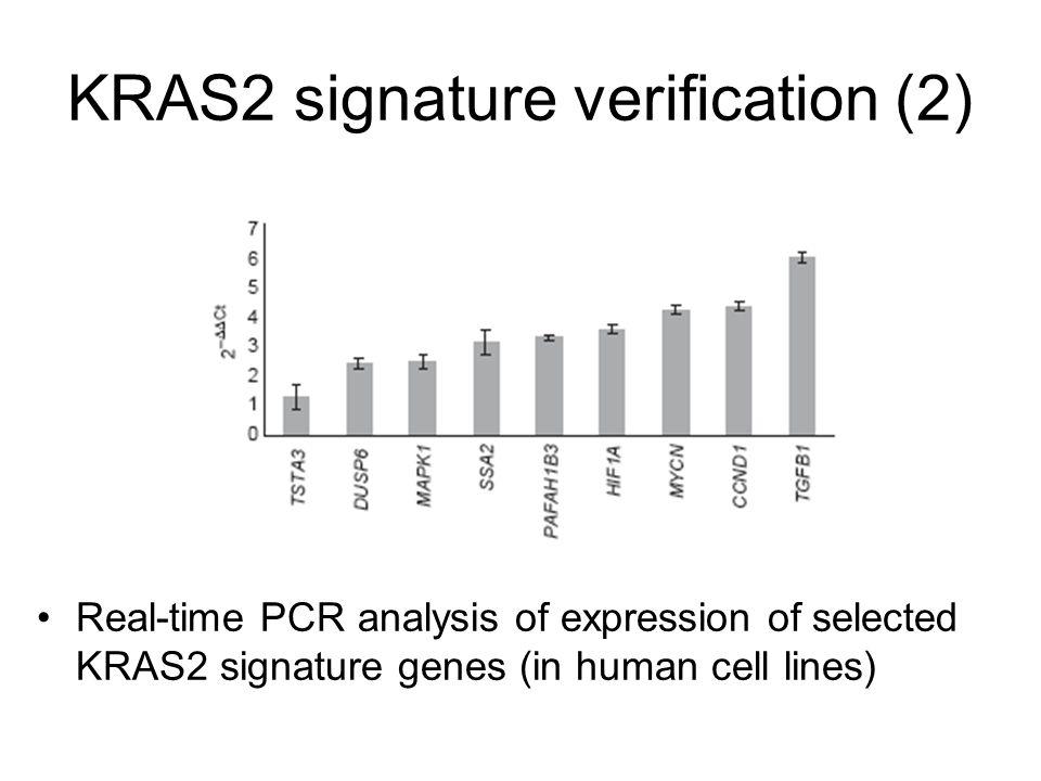 KRAS2 signature verification (2)