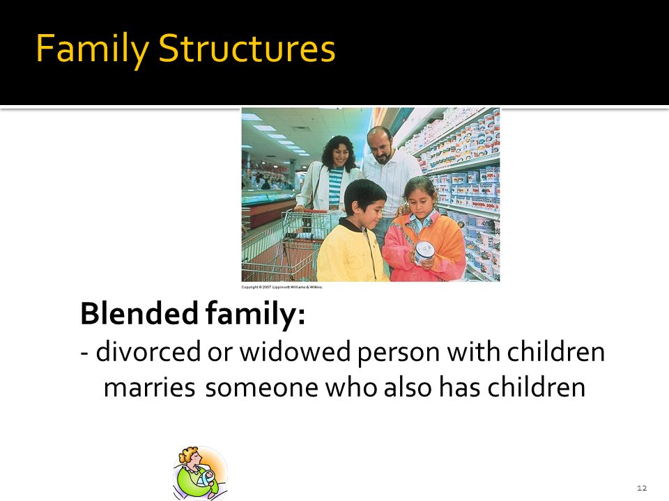 Family Structures Blended family:
