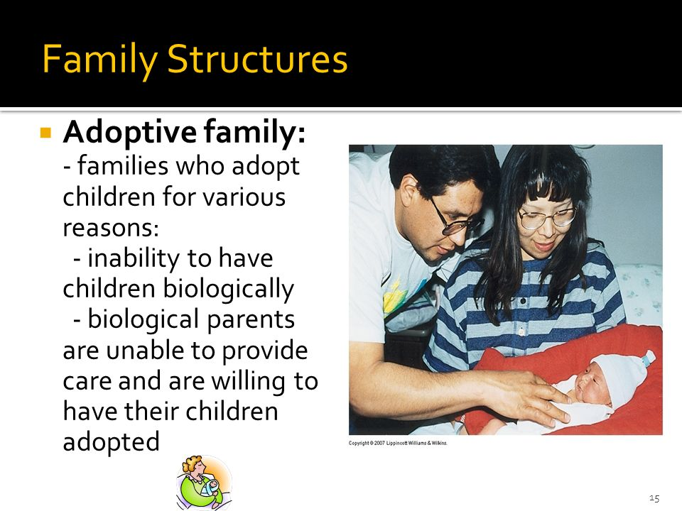 Family Structures Adoptive family: