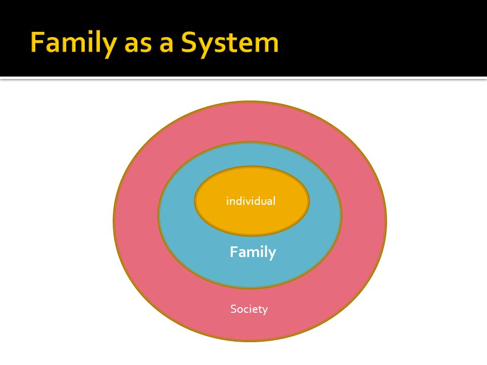 Family as a System individual Family Society