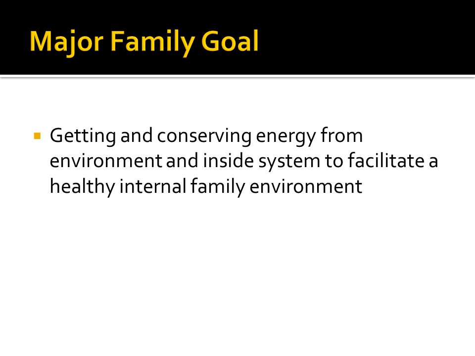 Major Family Goal Getting and conserving energy from environment and inside system to facilitate a healthy internal family environment.