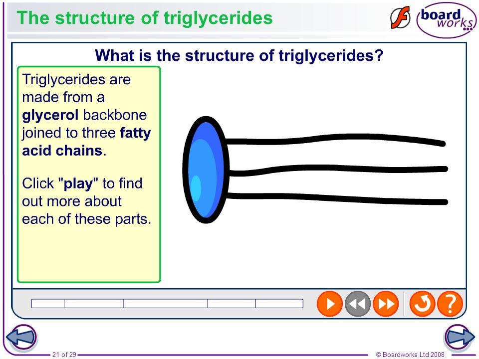 The structure of triglycerides