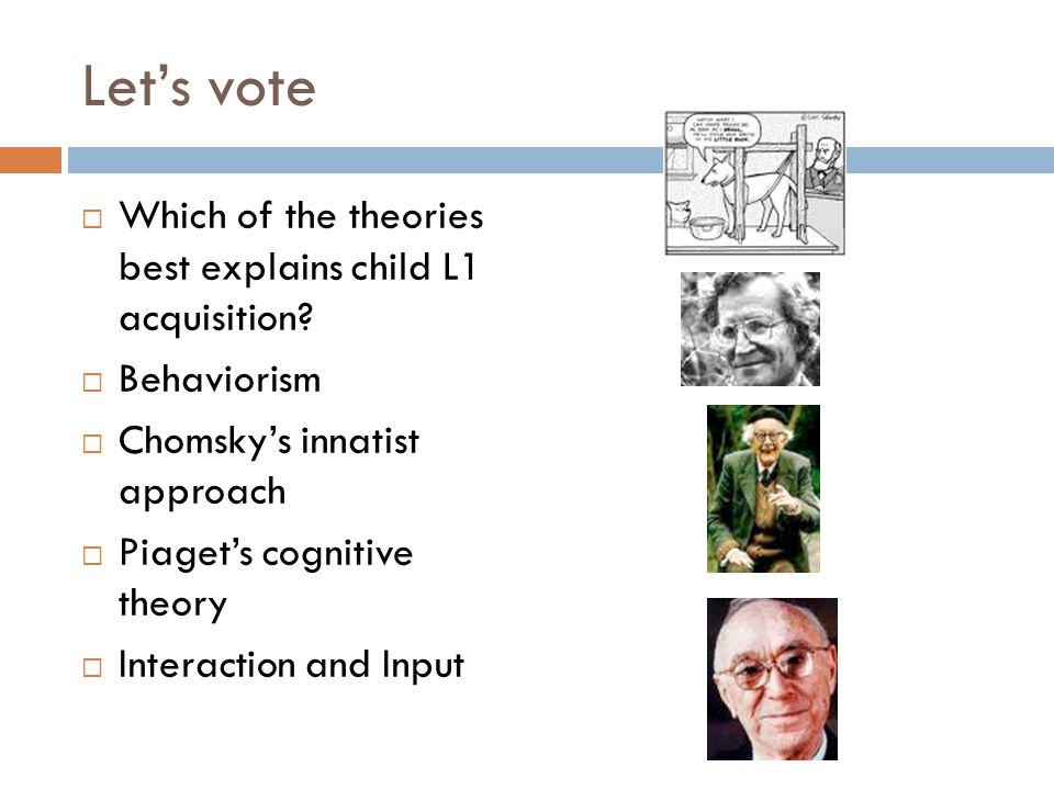 Let's vote Which of the theories best explains child L1 acquisition