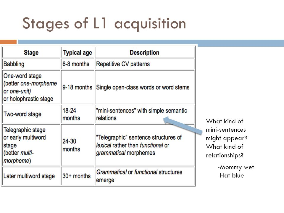 Stages of L1 acquisition