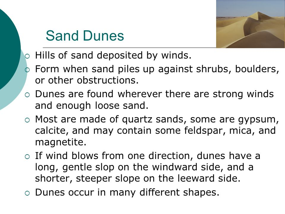 Sand Dunes Hills of sand deposited by winds.