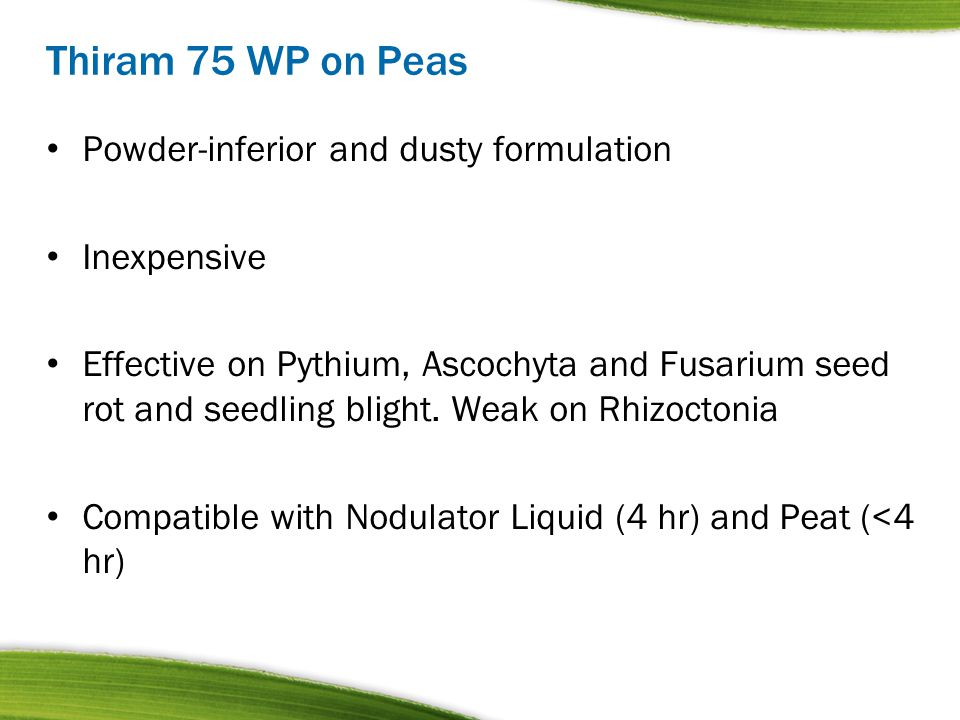 Thiram 75 WP on Peas Powder-inferior and dusty formulation Inexpensive
