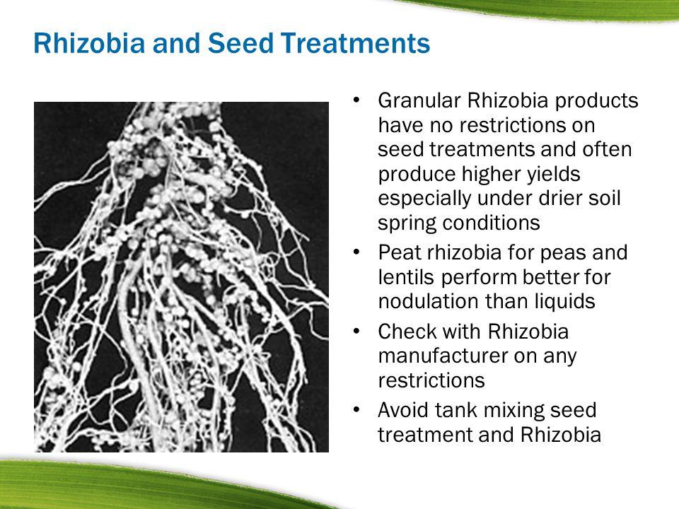 Rhizobia and Seed Treatments