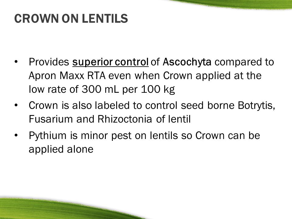 CROWN ON LENTILS Provides superior control of Ascochyta compared to Apron Maxx RTA even when Crown applied at the low rate of 300 mL per 100 kg.