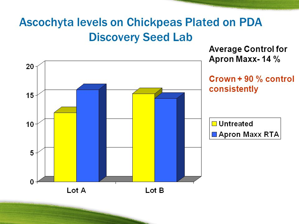 Ascochyta levels on Chickpeas Plated on PDA Discovery Seed Lab