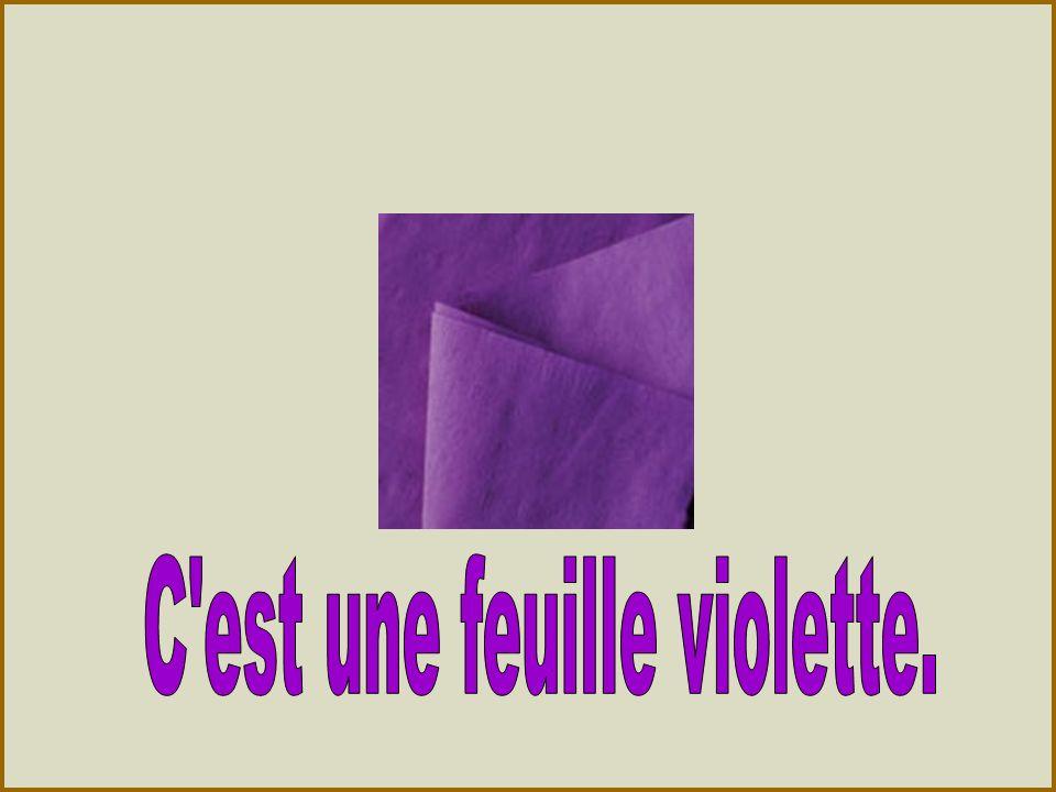 C est une feuille violette.