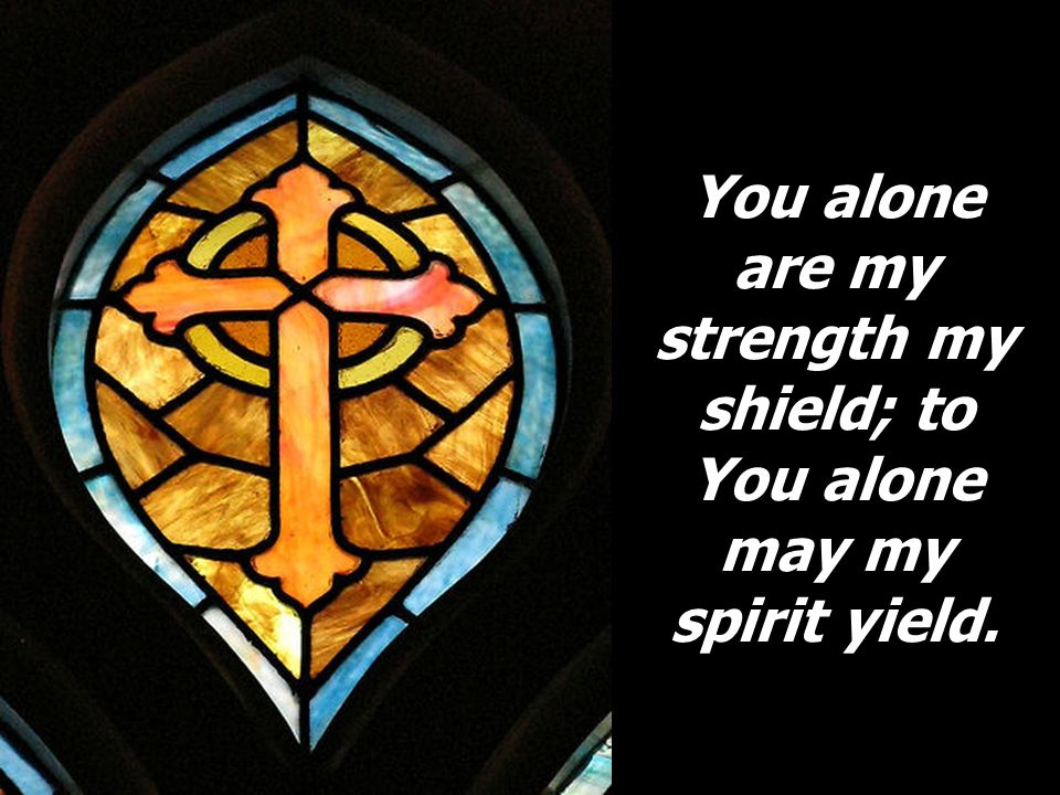 You alone are my strength my shield; to You alone may my spirit yield.