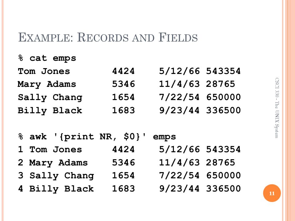 Example: Records and Fields