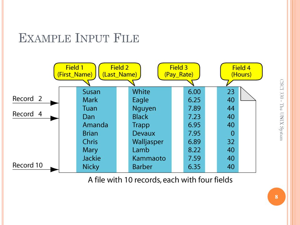 Example Input File CSCI 330 - The UNIX System