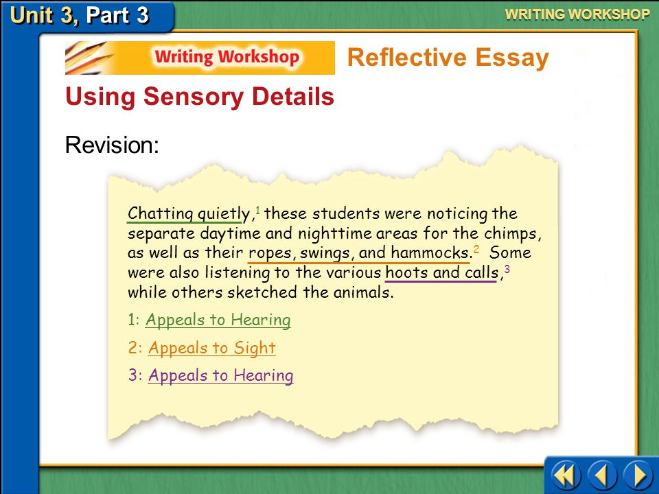 Reflective Essay Using Sensory Details Revision: