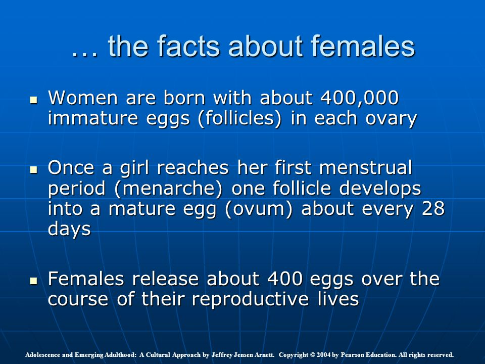 … the facts about females