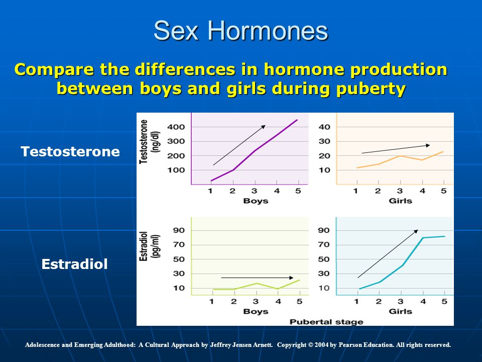 Sex Hormones Compare the differences in hormone production between boys and girls during puberty. Testosterone.
