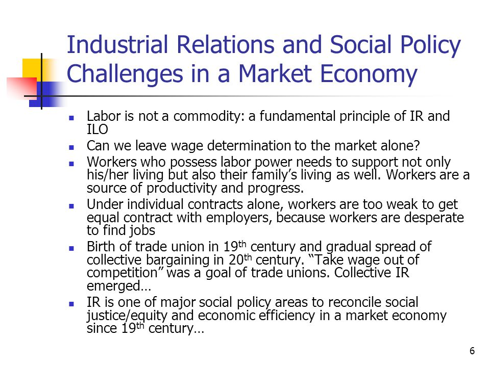 Industrial Relations and Social Policy Challenges in a Market Economy