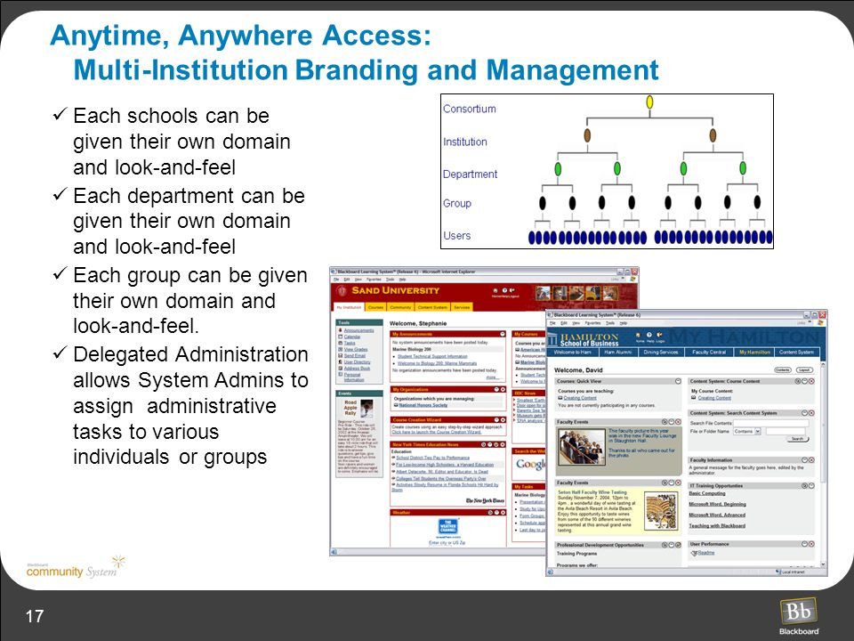 Anytime, Anywhere Access: Multi-Institution Branding and Management
