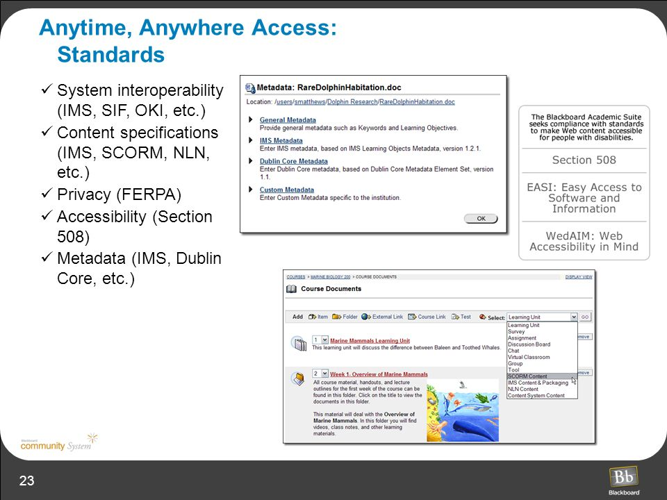 Anytime, Anywhere Access: Standards