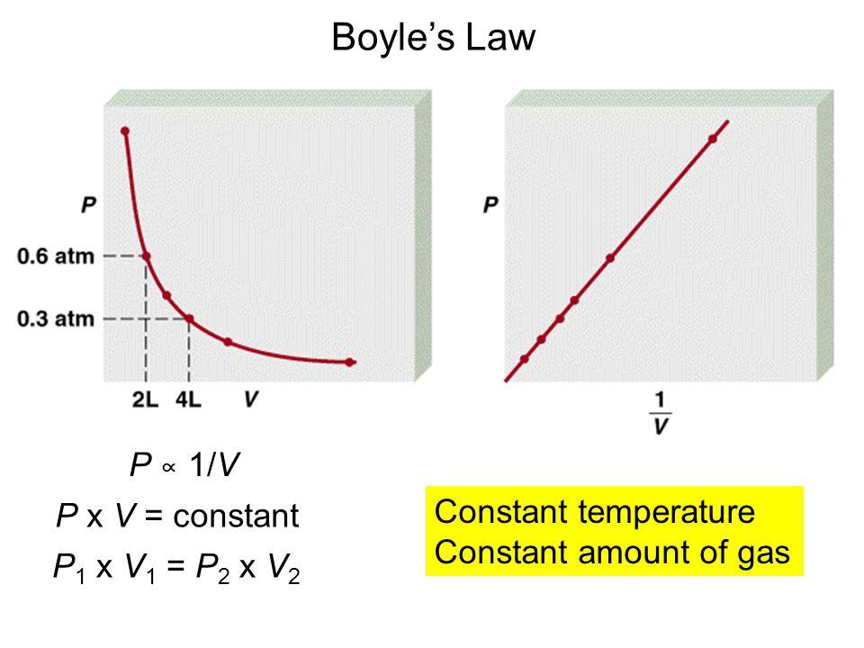 Boyle's Law P ∝ 1/V Constant temperature P x V = constant