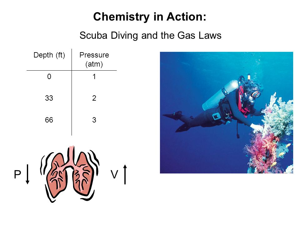 Scuba Diving and the Gas Laws