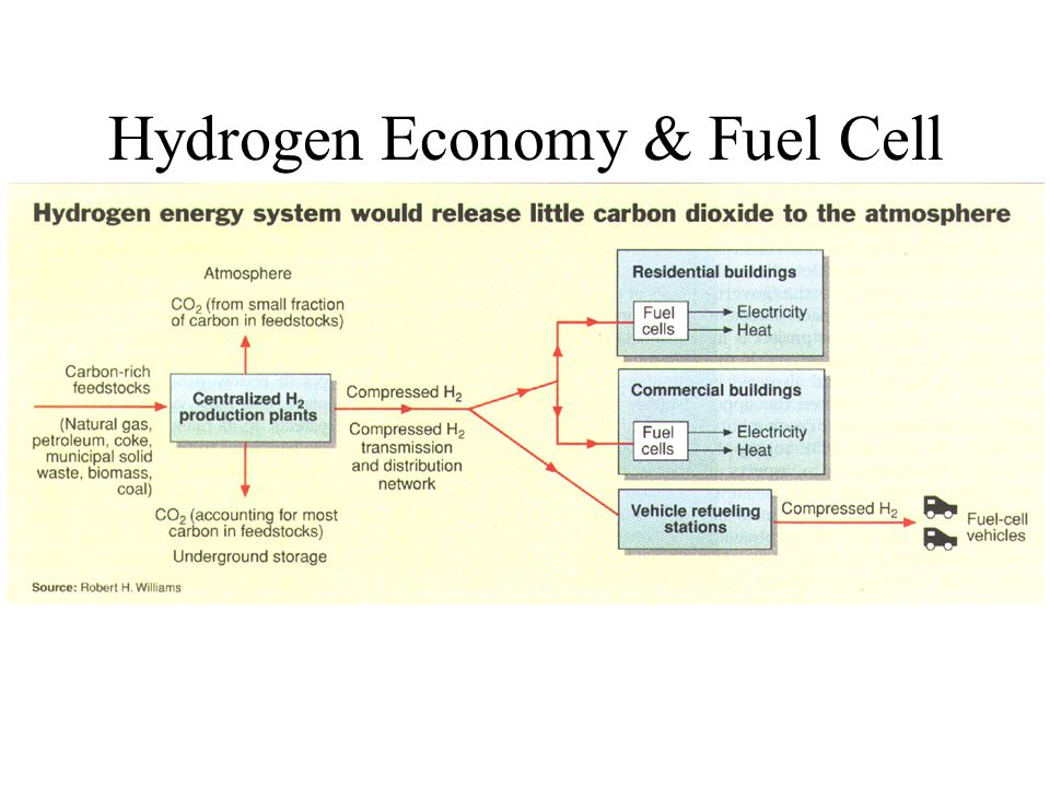 Hydrogen Economy & Fuel Cell