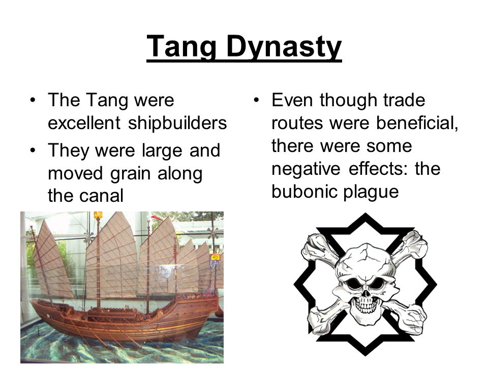 Tang Dynasty The Tang were excellent shipbuilders