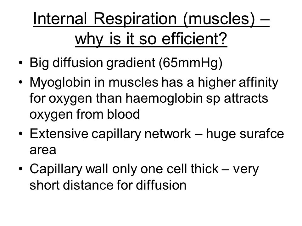 Internal Respiration (muscles) – why is it so efficient