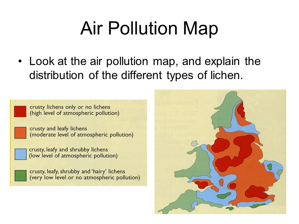 Air Pollution Map Look at the air pollution map, and explain the distribution of the different types of lichen.