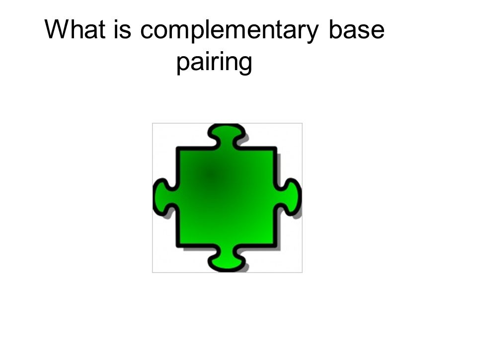 What is complementary base pairing