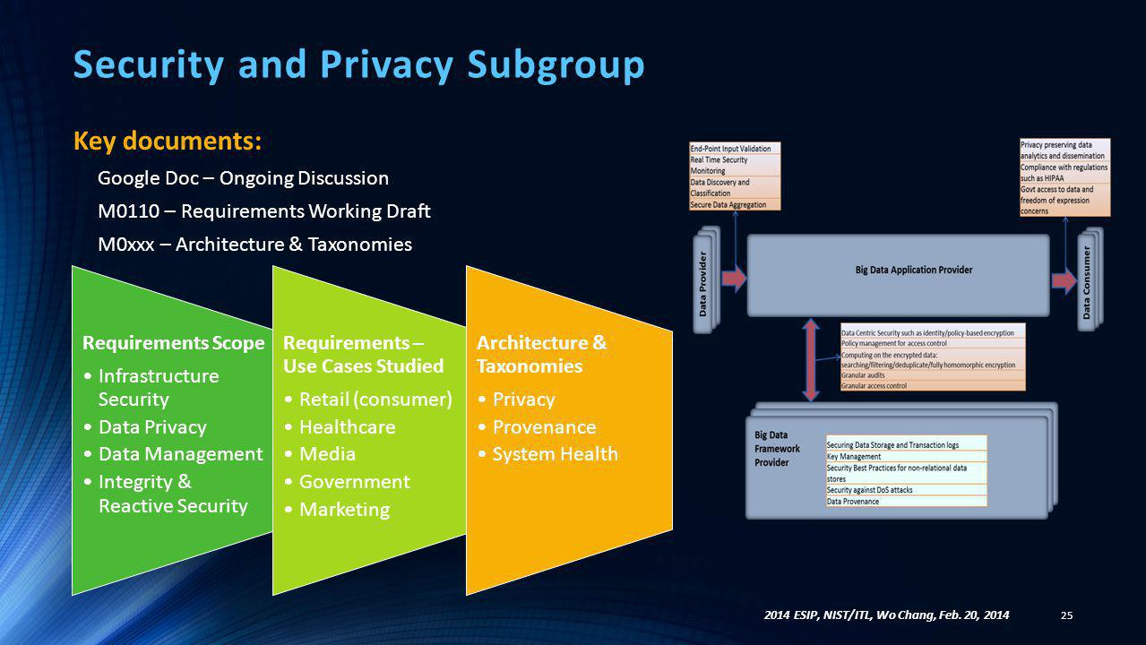 Security and Privacy Subgroup