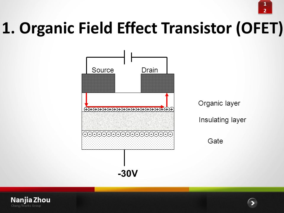 1. Organic Field Effect Transistor (OFET)