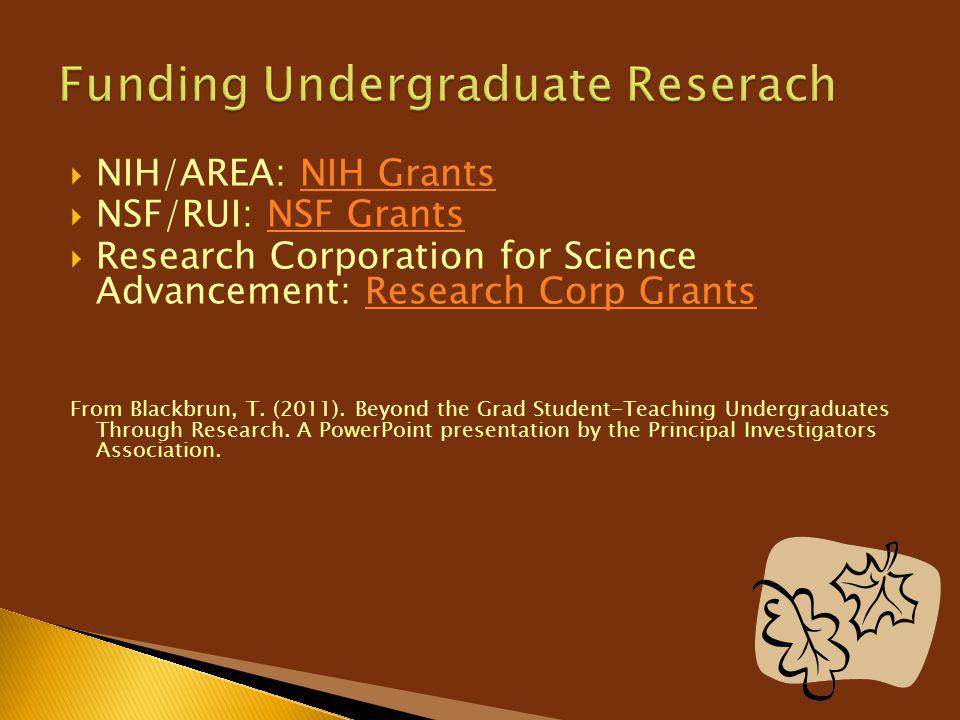 Funding Undergraduate Reserach