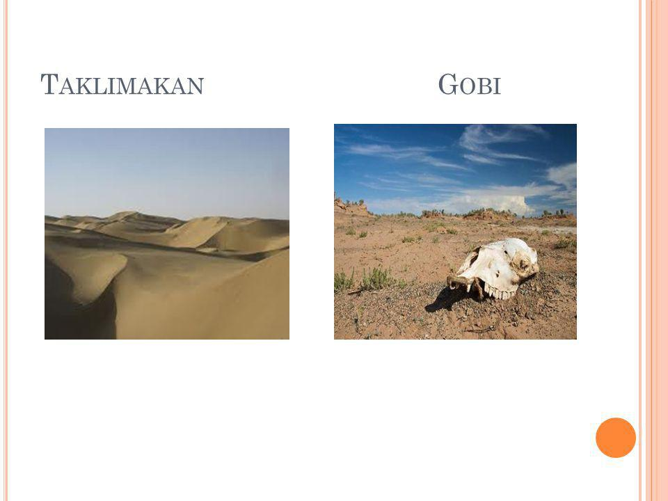 Taklimakan Gobi
