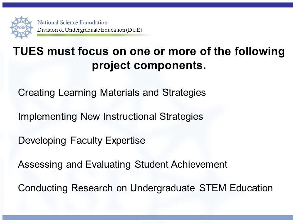 TUES must focus on one or more of the following project components.